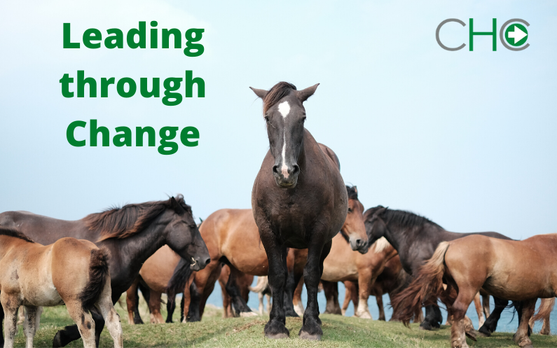 Leadership Through Change: An Overview